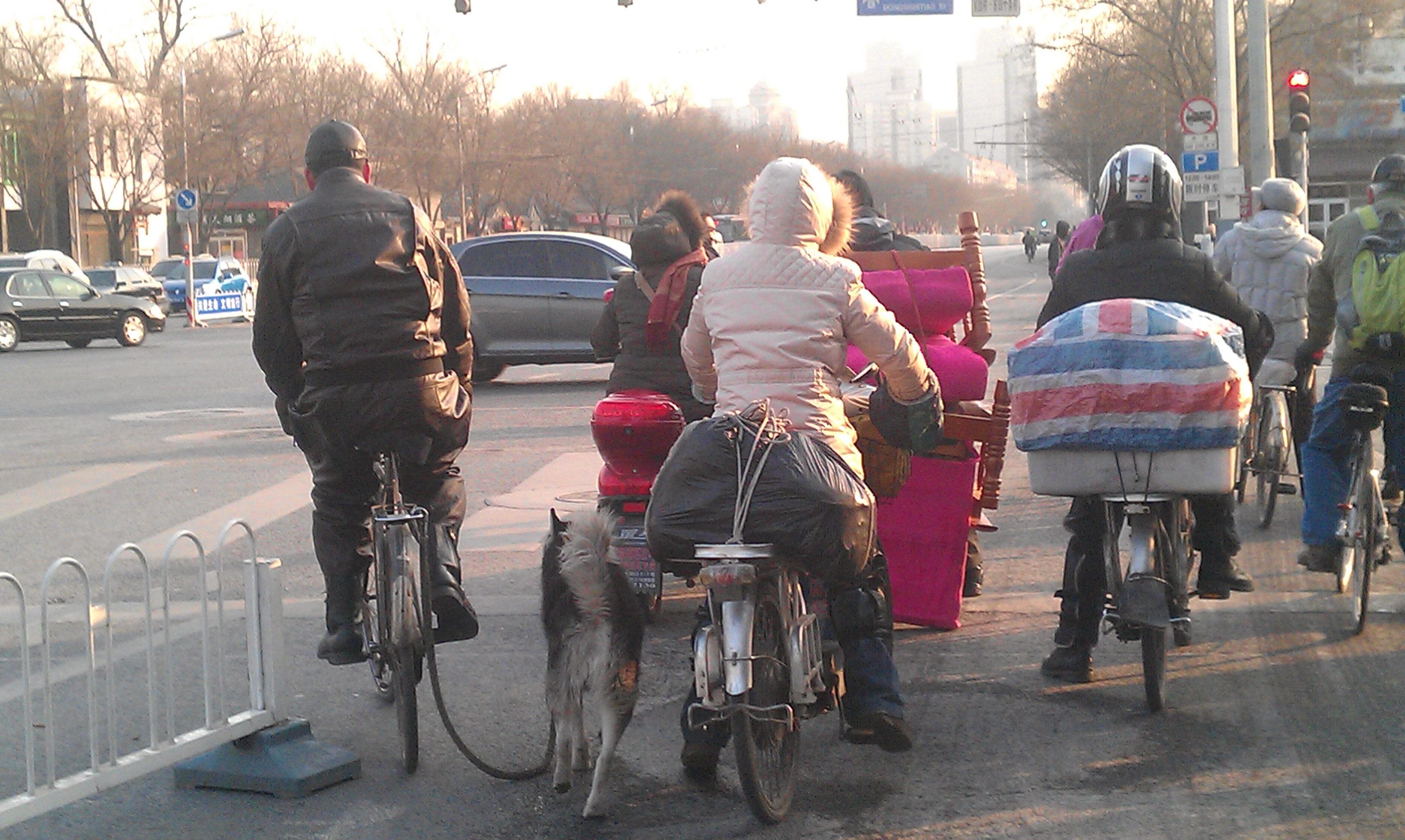 Beijing biker and dog